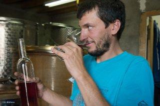 Le vin du Trièves. Jour de mise en bouteille à la cave de Prébois