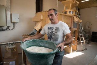 Le Moulin du Vieux Chêne, culture des céréales et fabrication de la farine à Lavars