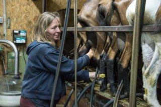 Sophie, GAEC Chabuel, éleveuse de chèvres et fromagère à Châtel en Trièves