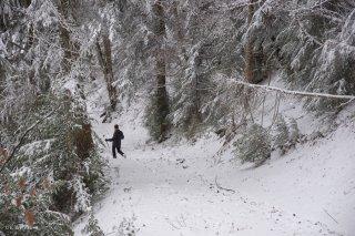 Un randonneur sur un sentier du Ménil. Trièves, Isère